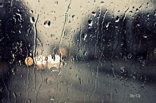 Rainy day - Photo Gallery