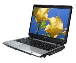 laptop - beautiful lap