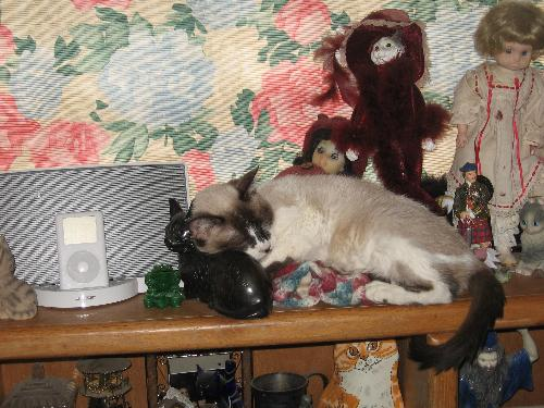 Star on a nick nack shelf - yes, that's a very hard pillow