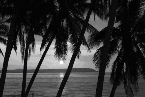 Bright Moon - God's wonderful creation.