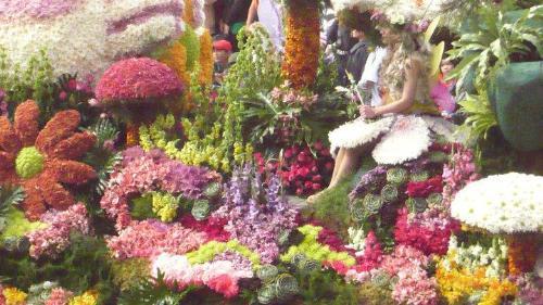 Flower Festival - Baguio City Panagbenga
