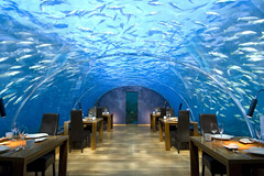 Resturant - This resturant is in Maldives and is under water in a lake!