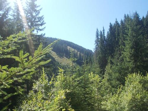 Parang Mountains - This picture was taken while hiking in Parang Mountains