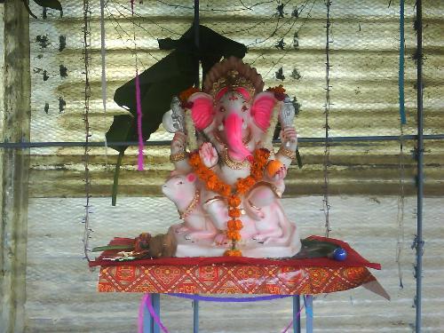 Festival celebration: Ganesh Chaturthi - Ganesha Chaturthi is celebrated mostly in North-western India.
