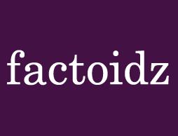 Factoidz - Factoidz, articles