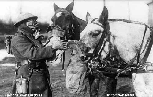 Gas masks - In WWI horses were used alot to haul artillary into battle. Sometimes ,like humans,they had to wear gas masks.