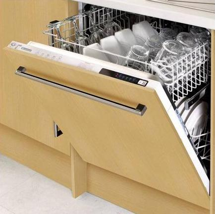 Dishwasher - Cant live without one
