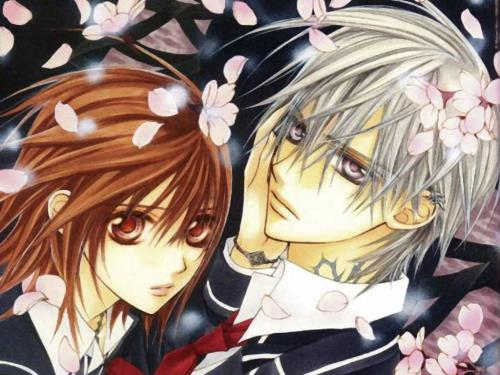 vampire knight - cross academy is attended by two groups of students:the day class and night class. Yuuki Cross and Zero Kiryu are the guardians of the school,there to protect the day class from the academy's dark secret: the night class is full of vampires.