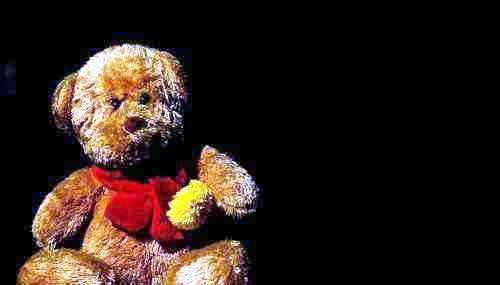 teddy - a bear teddy for kids.
