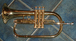 Flugel horn - It is a big trumpet.