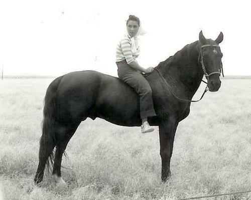 Liz Tayor - Liz Taylor on a Saddlebred while fimling the movie 'Giant'.