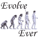 Every person to a better individual evolves throug - Human beings have evolved through other forms..But evolution continues even during human life.