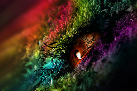 Fantasy - Fantasy as imaginative unrealistic power.