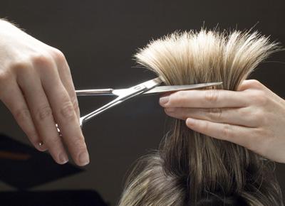 hairdressing - hairdressing / scissors