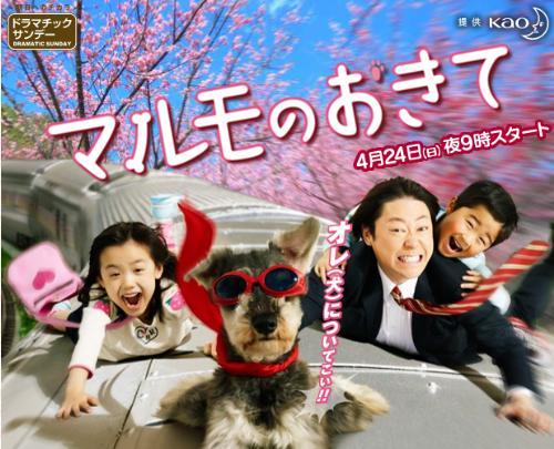 Marumo no Okite - Ashida Mana as Kaoru, Mook the talking dog, Abe Sadao as Takagi Mamoru, and Suzuki Fuku as Tomoki