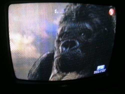 kingkong - Watching kingkong in tv
