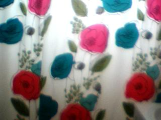 shower curtain  - my bathroom curtain