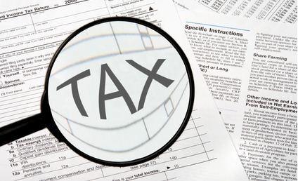 tax - Tax payer