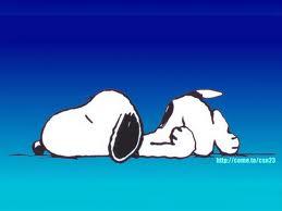 sleeping - Snoopy is sleeping