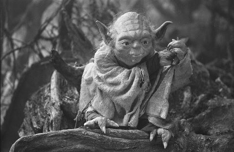 Yoda - The mentor to Luke Skywalker and Star War charecter. Frank Oz did his voice and was the Muppeteer for Yoda. In the Star Wars Episode I,II and II,sometimes he is computer genurated.