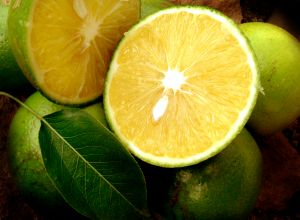 Lemons - Lemons,lovely and healthy :)