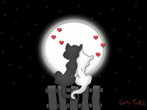 Love I found in you - love,love