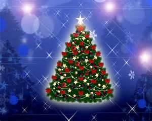 Christmas Tree - I finally put it up!