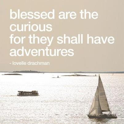 Adventures for the curious mind - The curious always have interesting adventures