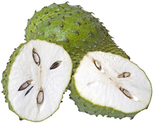 anti cancer soursop - aniti cancer soursop