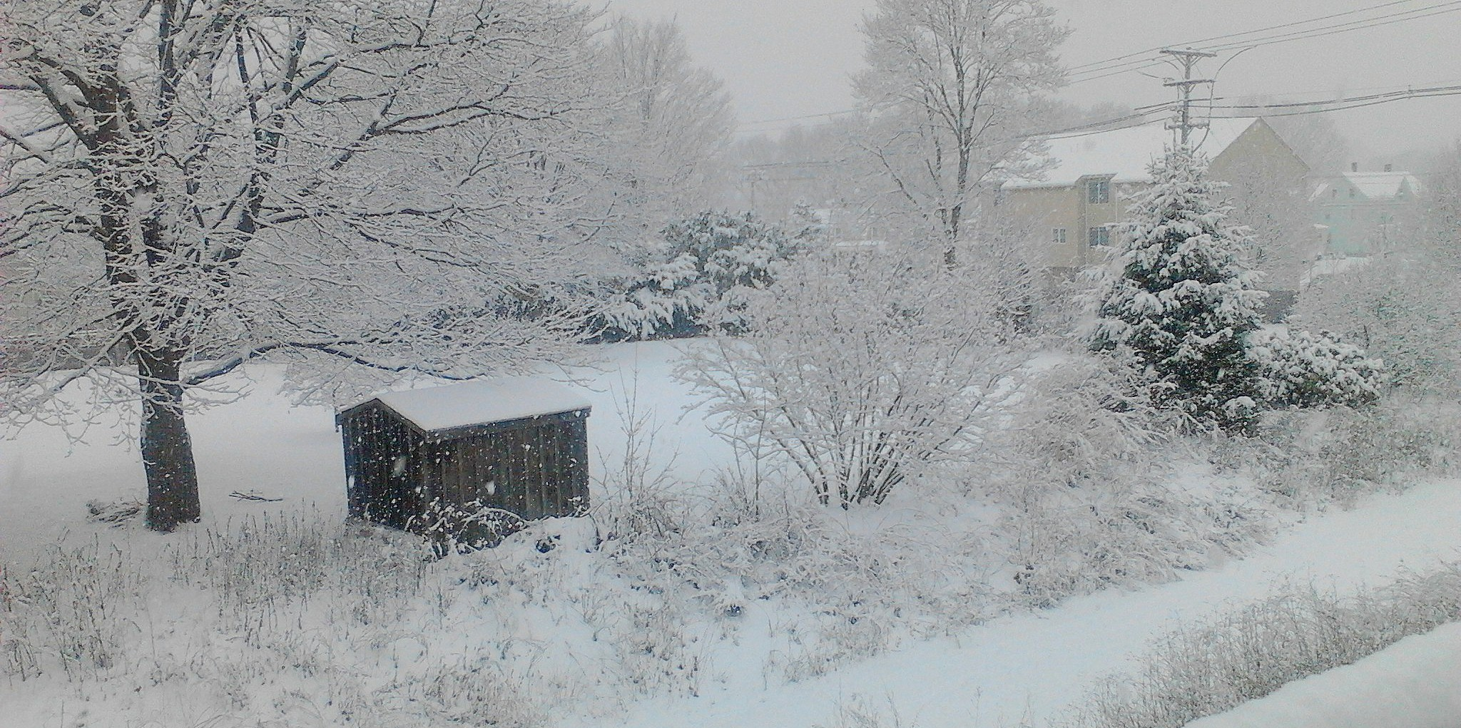 Snow on a rustic shed, Photo by Anja