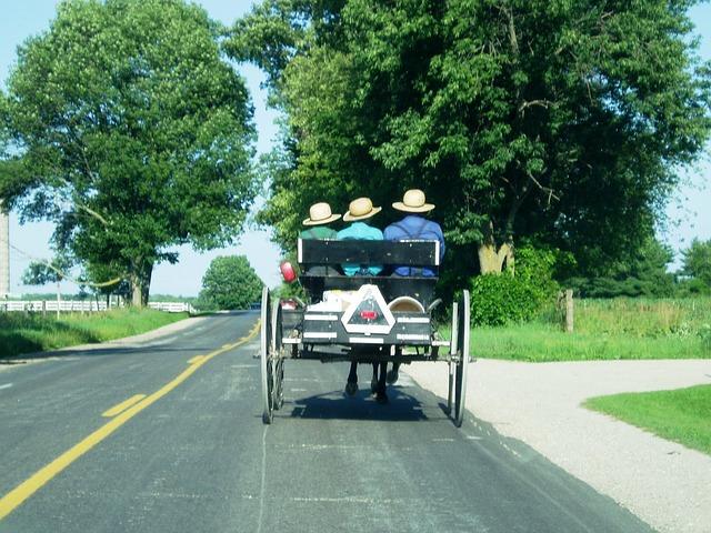 Amish Buggy image from Pixabay