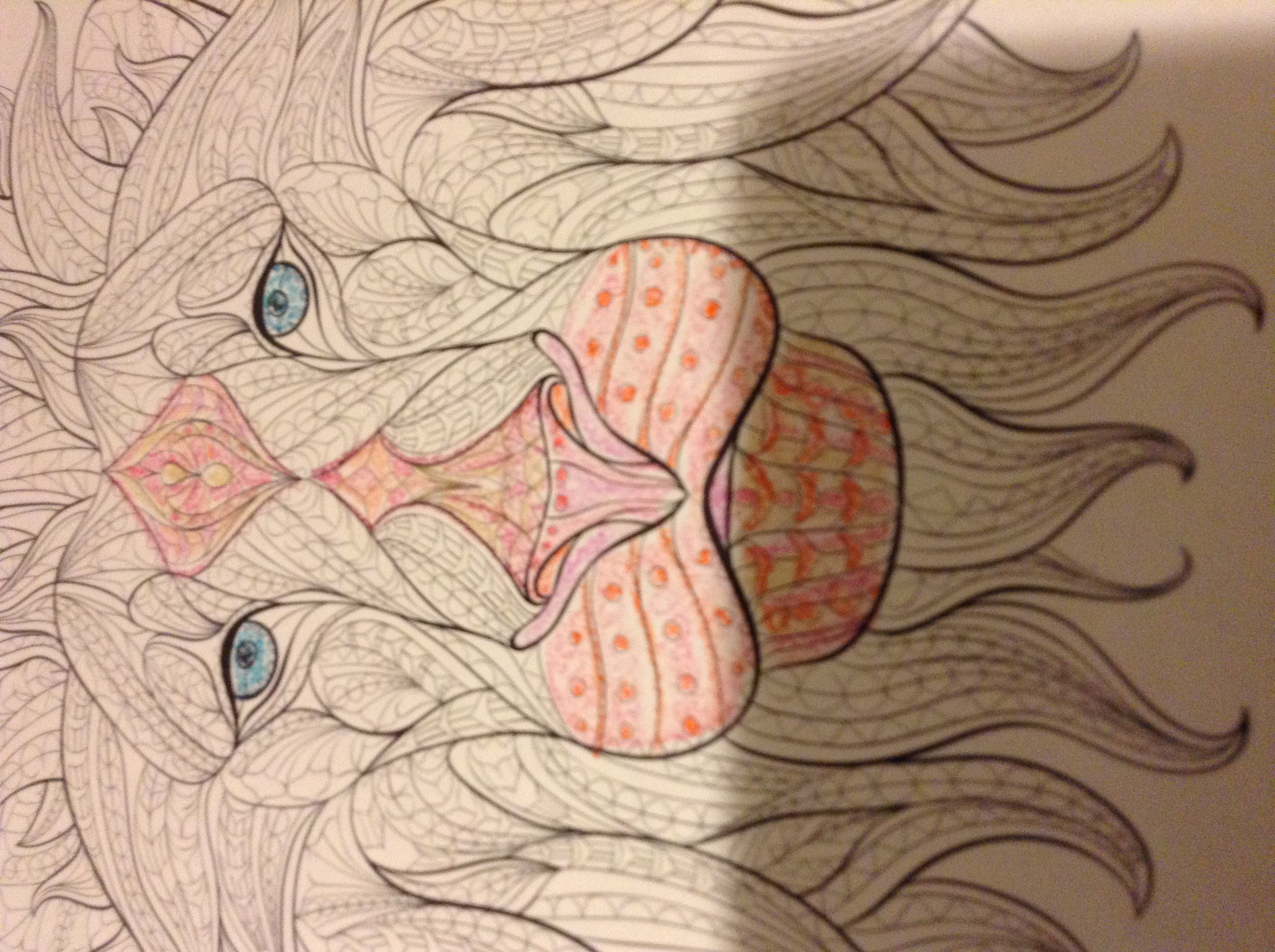 Lion is my coloring
