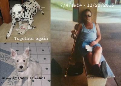 My ex-boyfriend,Tom, Maggie the Dalmatian and Gizmo the Westie