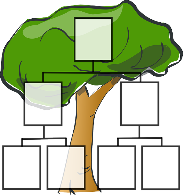 https://pixabay.com/en/family-tree-family-ancestors-tree-297812/