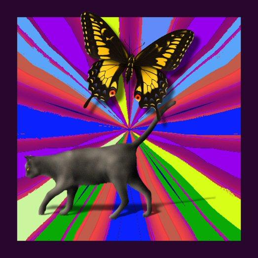 B ubbles a nd Butterfly