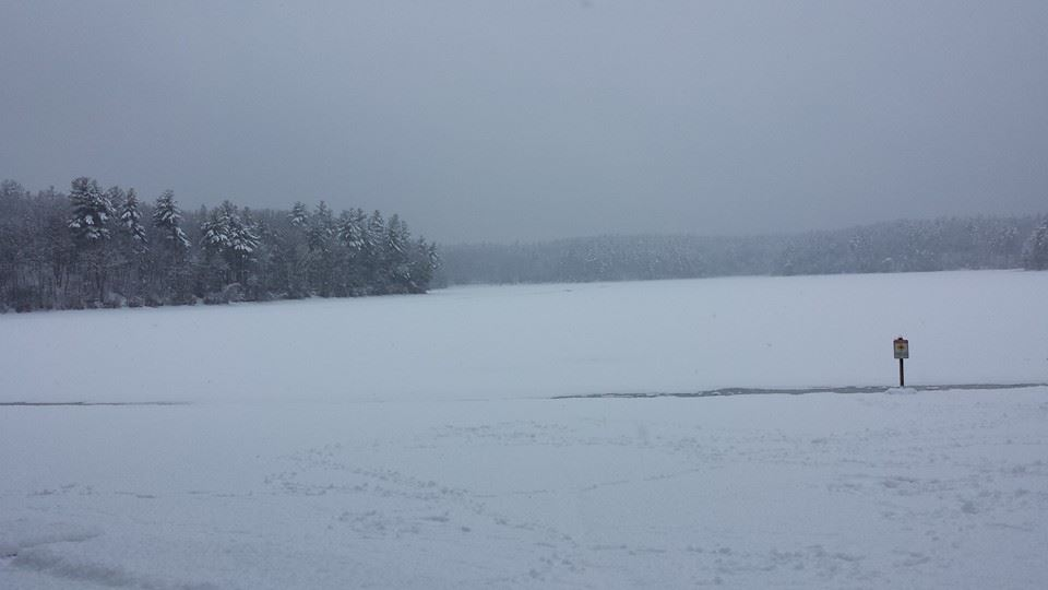 Photo of Walden Pond, MA taken by author, Deborah-Diane; all rights reserved.