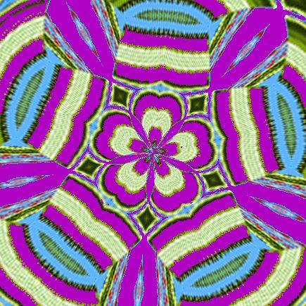 Bittersweet flower