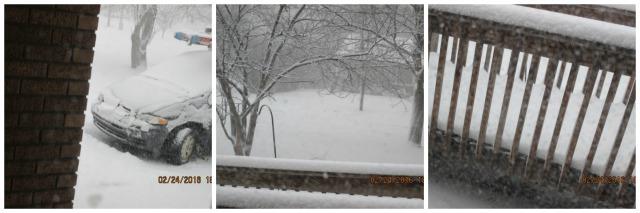 Feb 2016 blizzard