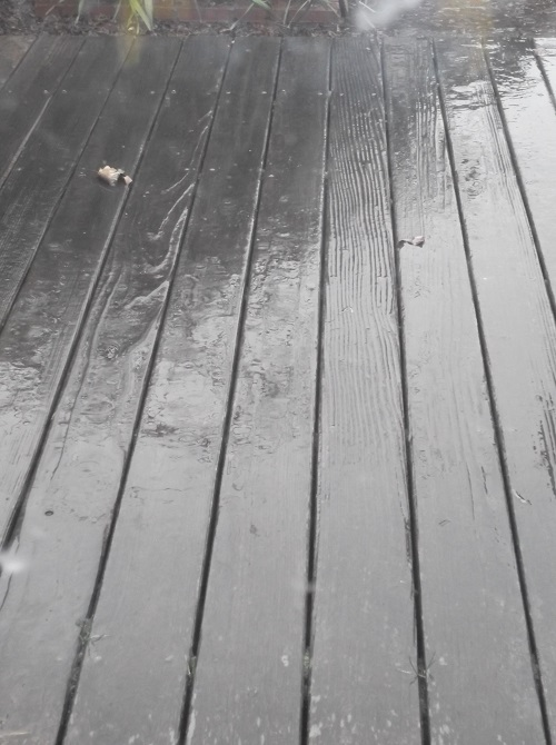 Rain on our back deck