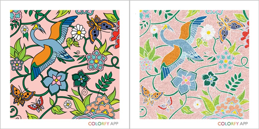 images made with colorfy app with different filters and looks