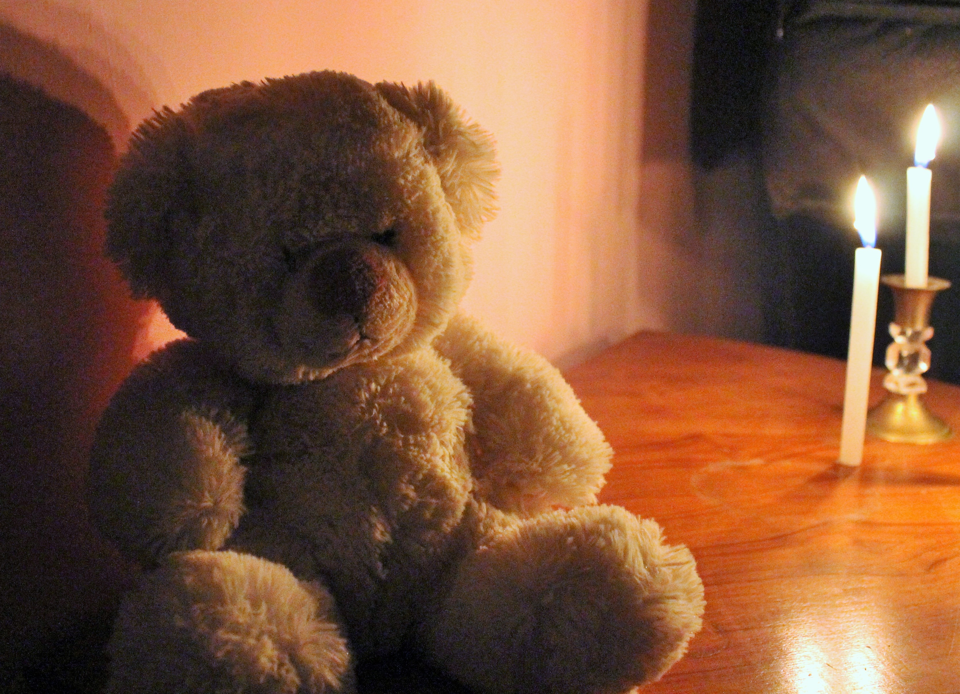 Teddy in the light, sofspics