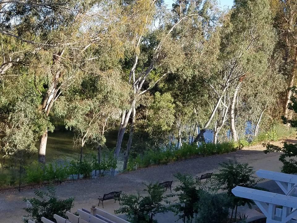 Photo of Napa River taken by author, Deborah-Diane