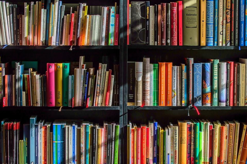 https://pixabay.com/en/books-bookstore-book-reading-shop-1204029/