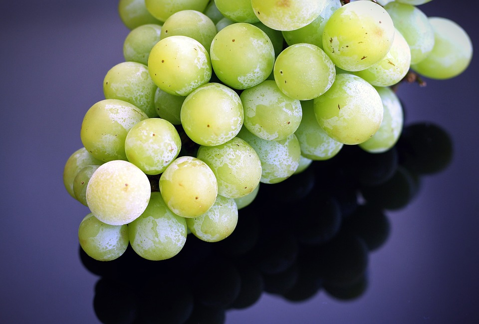 https://pixabay.com/en/grapes-frozen-fruit-summer-organic-1476089/