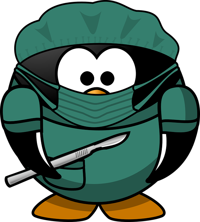 https://pixabay.com/en/doctor-tux-animal-bird-bonnet-161345/