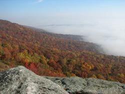 Lookout Mountain - Picture of Lookout Mountain in the morning fog.