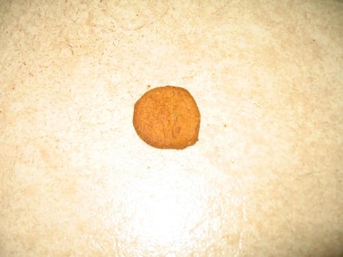 My photo: Cookie on the floor