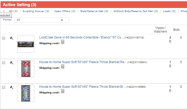 Screen cap of items I have on eBay