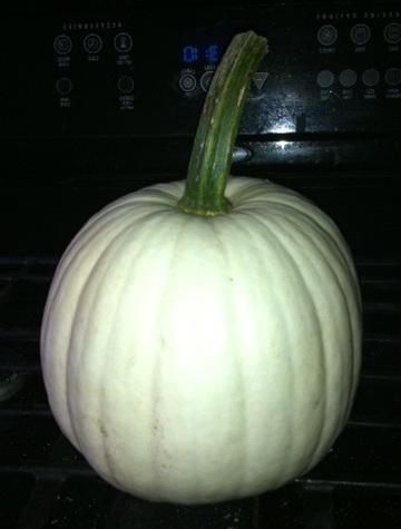 https://commons.wikimedia.org/wiki/File:White_Pumpkin.jpg