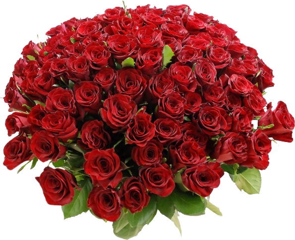 https://commons.wikimedia.org/wiki/File:Bouquet-of-Red-Roses.png
